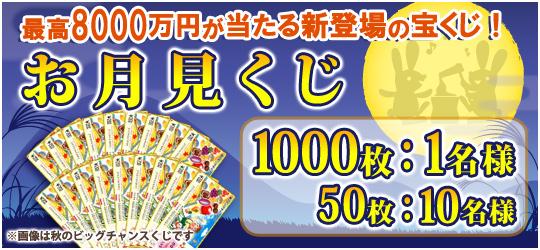 お月見くじ【1500枚】