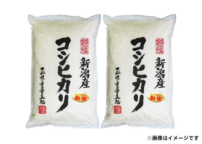 新潟県産コシヒカリ(5㎏×2袋)【毎プレ】