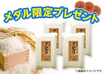 新米 新潟県産こしひかり★20kg★<メダル応募限定>