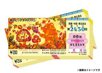 秋のビッグチャンスくじ20枚【50名様】