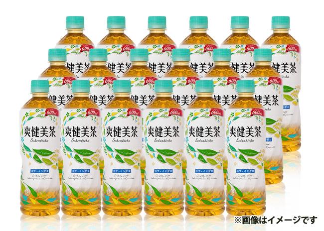 爽健美茶(600ml×48本)【毎プレ】