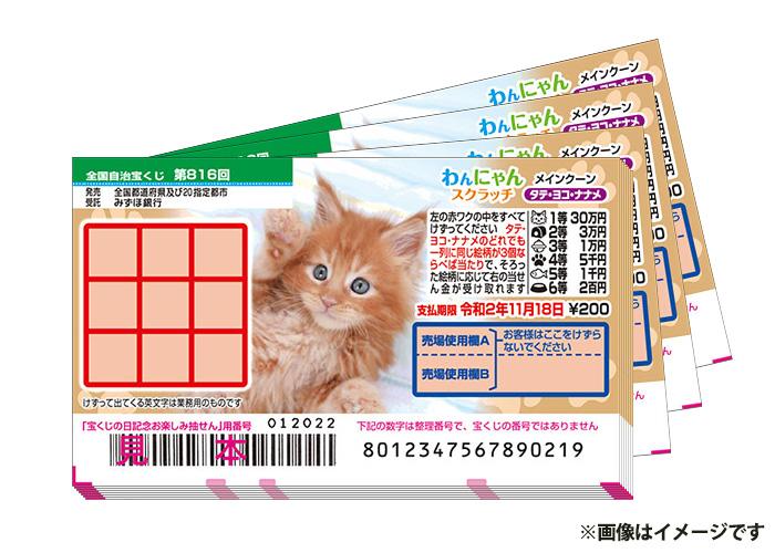 最高500万円当たる!【わんにゃんスクラッチ マンチカン 100枚】