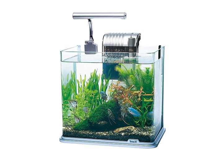熱帯魚飼育セット(LEDライト付 )