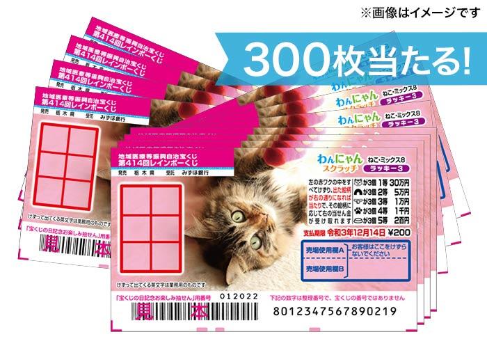 1等は2400本!【わんにゃんスクラッチ ねこ・ミックス9 300枚】