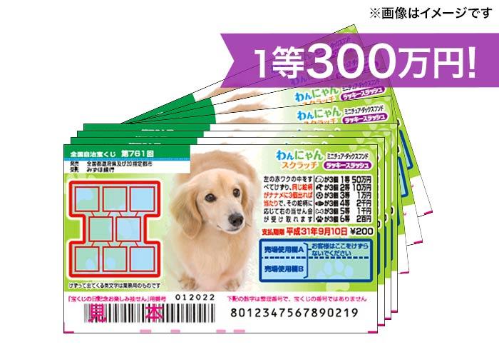 最高300万円GET!【わんにゃんスクラッチ 100枚】