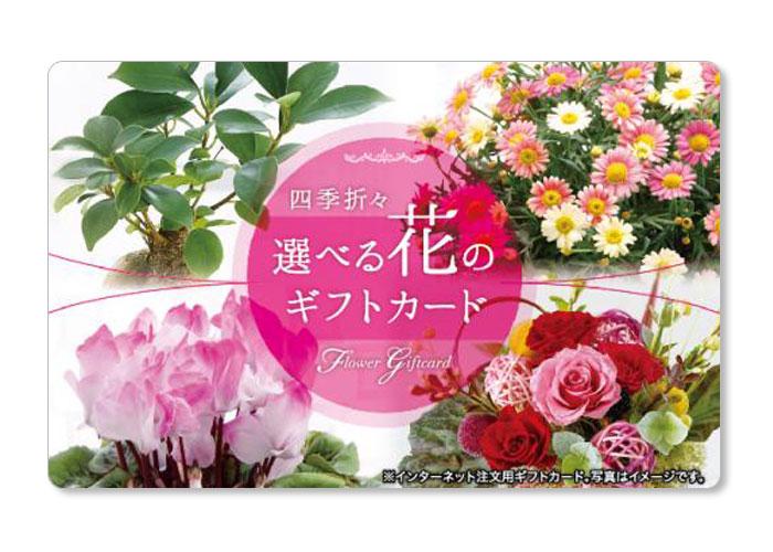 選べる花のギフトカード 5000円分