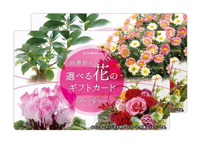選べる花のギフトカード 1万円分