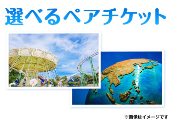 東京ディズニーリゾート or ユニバーサル・スタジオ・ジャパン チケット(ペア)