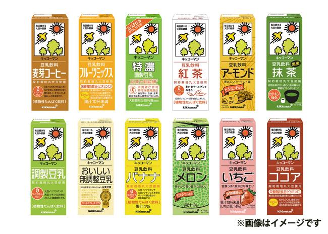 キッコーマン 豆乳バラエティーセット 200ml(12種類×各3本)【毎プレ】