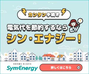 家庭の電気代を安くしたいなら【シン・エナジー】
