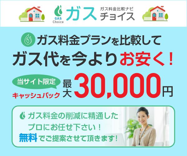 最大30000円現金キャッシュバック!ガス代を今よりお安く!【ガスチョイス】