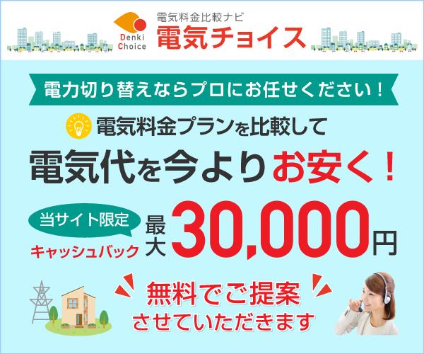 最大30000円現金キャッシュバック!【電気チョイス】