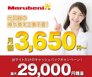 \最大29,000円キャッシュバック!/【Marubeni光】なら光回線のりかえ工事が不要!