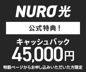 キャッシュバック実施中!超高速下り最大2Gbpsのインターネット【NURO 光】