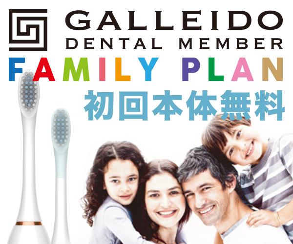 本体・送料無料!【GALLEIDO DENTAL MEMBER】電動歯ブラシのサブスク