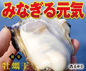 1包に生牡蠣約4個分相当の亜鉛配合!【黒宝 牡蠣王】