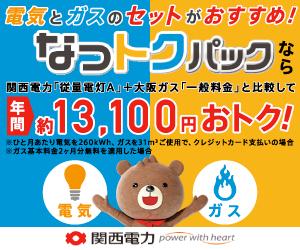 関西電力の「なっトクパック」